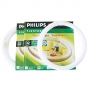 หลอดไฟ Philips นีออนกลม 32W.
