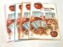 แฟ้มโชว์เอกสาร โรบิน 175 A4 (สีส้ม,ชมพู,ฟ้า,ขาว) ใส่กระดาษ A4 ได